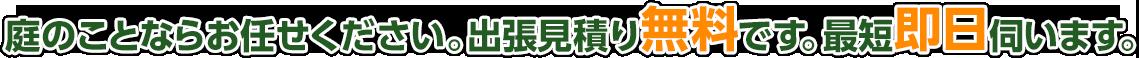 横須賀市、逗子市、鎌倉市、横浜市で大木伐採、植木剪定、草刈りならお任せください!